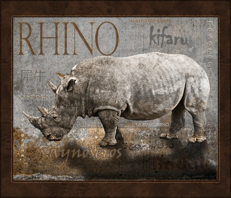 Rrrhino_by_any_other_name_contest79964preview