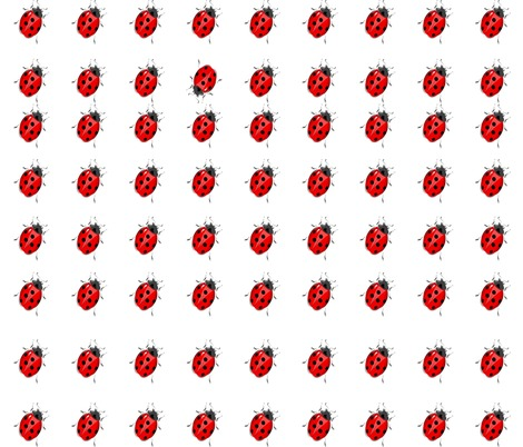 Rrrspoonflower_bee__tle__different_contest82208preview