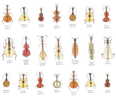Rrrstringed_beetles3c_contest81464preview