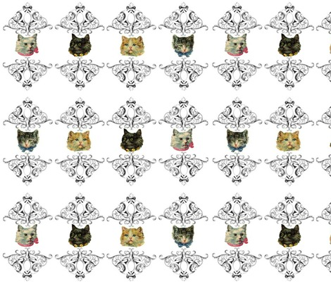 Rrrrrrrrrrrcolorful_cats_contest83298preview