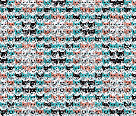Rrcat_heads_contest83698preview