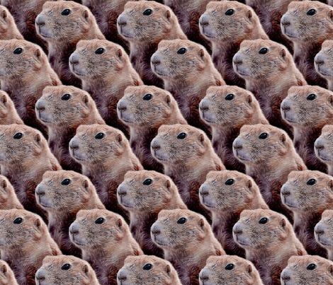 Rrphilofgroundhogs4_contest90021preview