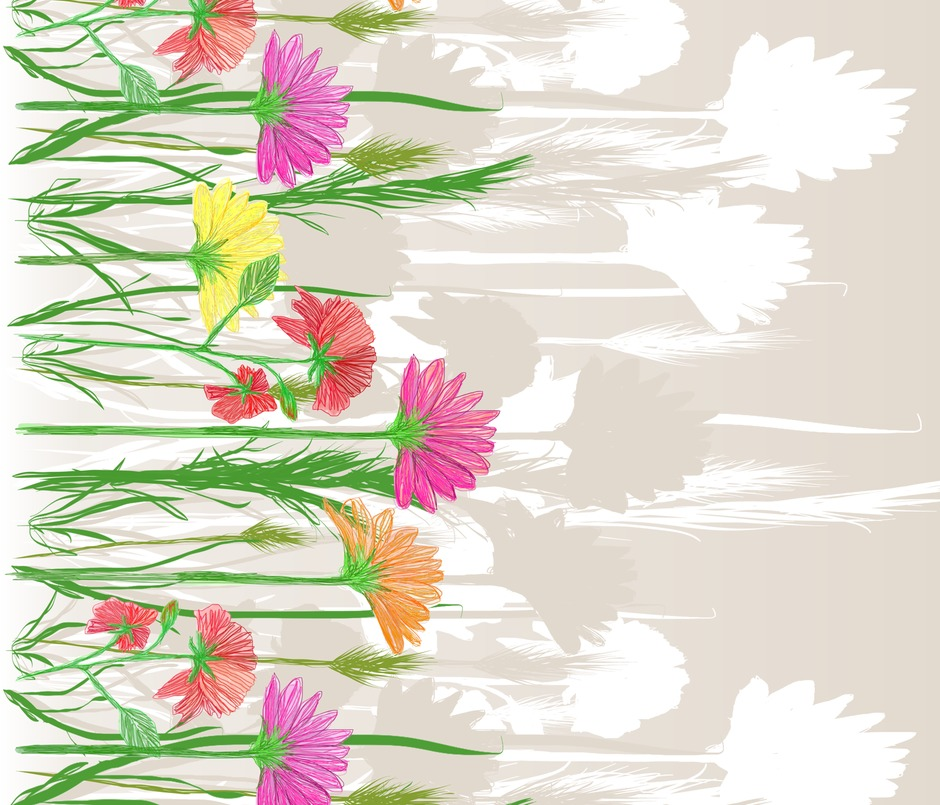 Rrrrgerbera_and_poppy_border_wide_contest98068zoom