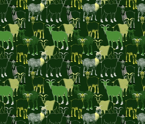 Rrhipster_goats_contest104593preview